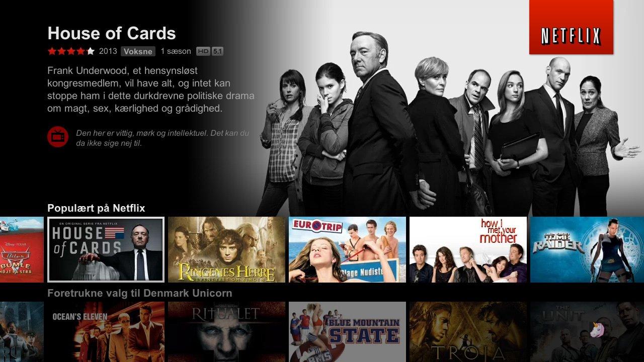 Ny brugeroverfalde Netflix