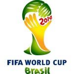 fodbold vm 2014