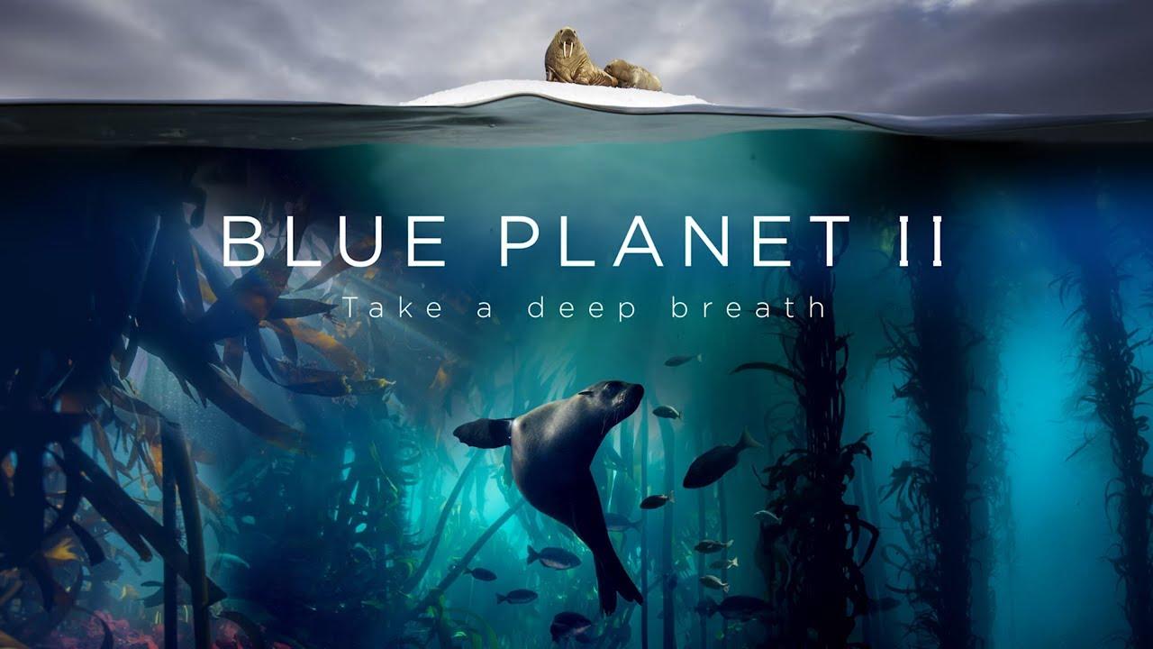 blue planet II UHD HDR