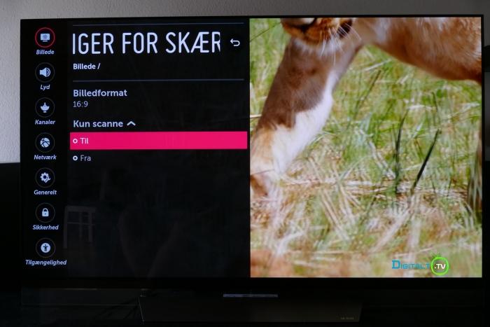 LG OLED Kun scanne indstilling menu