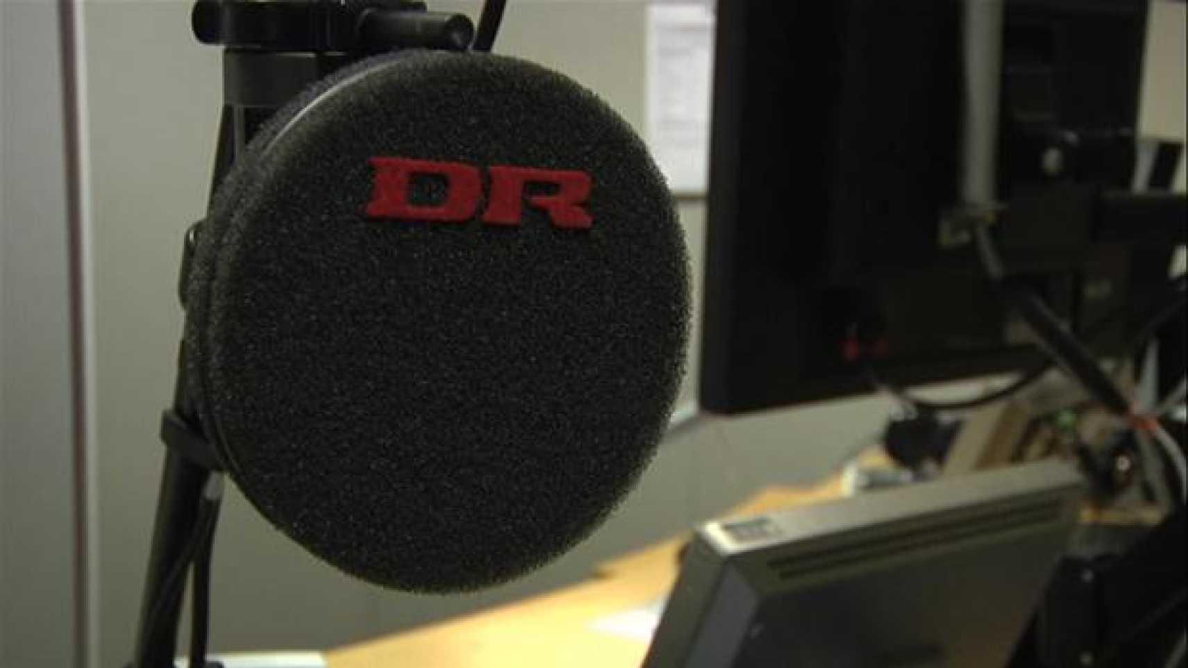 DR mikrofon pop filter