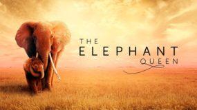 the elephant queen Apple+