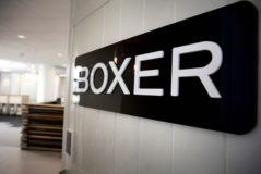 Foto af Tv-distributøren Boxer får ny direktør