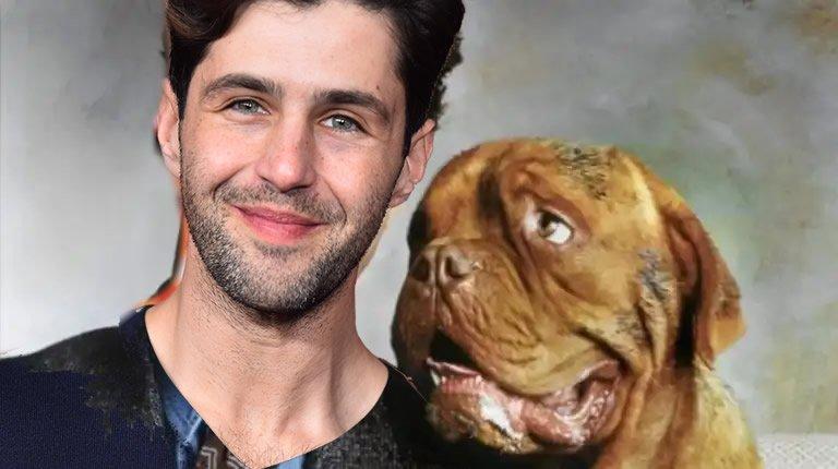 Turner og Hund serie Disney