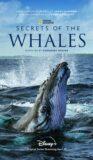 Hvalernes hemmeligheder