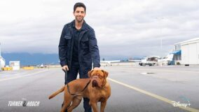Turner og Hund