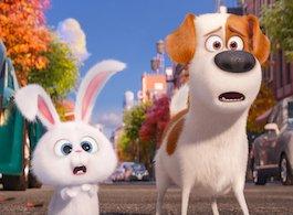 Kæledyrenes hemmelige liv Netflix
