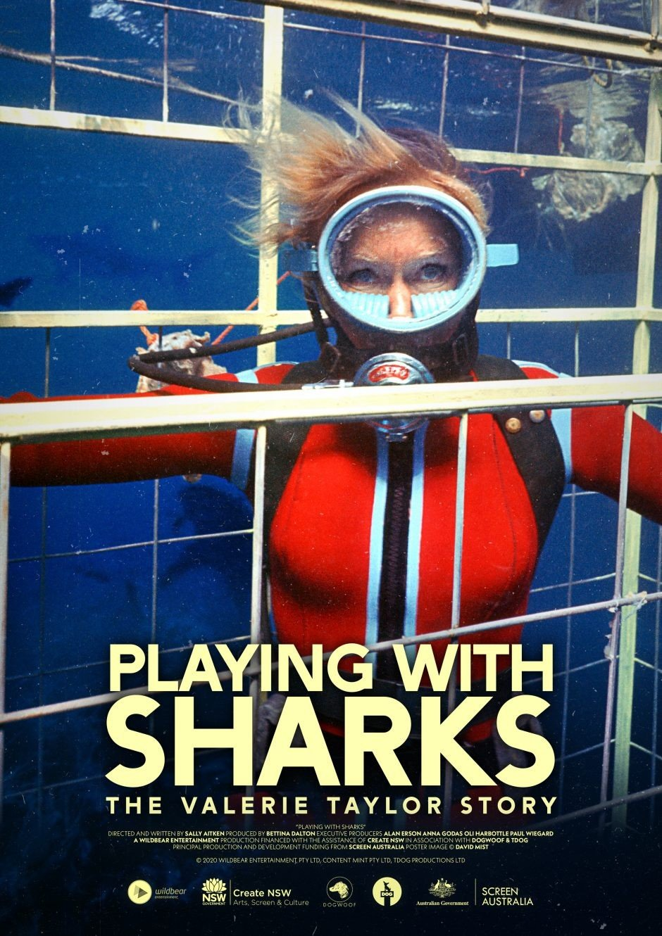 Playing with Sharks Disney